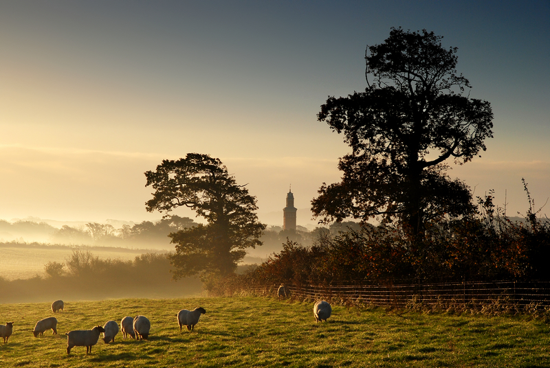 z1183 Misty Morning, Bowcombe - The Inner Island inc Newport & Godshill