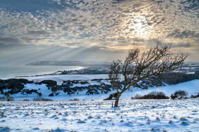 z3180 Snowy View over Sandown Bay - Latest Photos