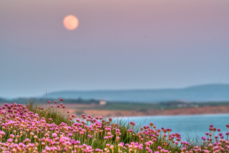 z3061 Moonrise over Compton Bay - Freshwater Bay to Colwell Bay