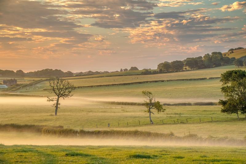 z3207 Morning Mists of Ashey - Latest Photos