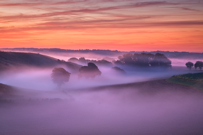 z1698 Dawn Mist, Arreton - The Inner Island inc Newport & Godshill