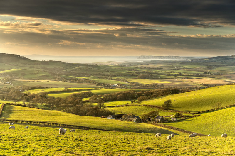 z2161 Evening View from Wroxall Down - Sandown, Shanklin, Luccombe and Wroxall
