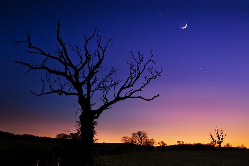 z2063 Moon, Venus & Jupiter Conjunction, Nunwell