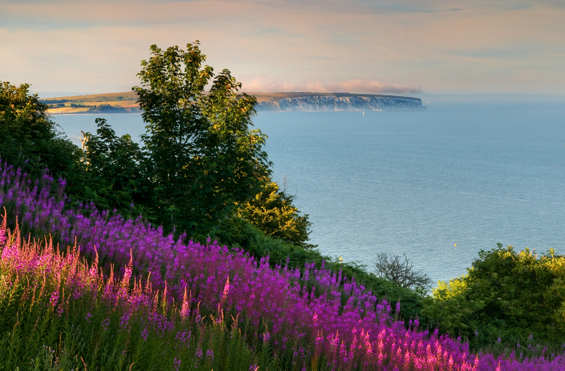 z1880 Culver View from Shanklin - Sandown, Shanklin, Luccombe and Wroxall