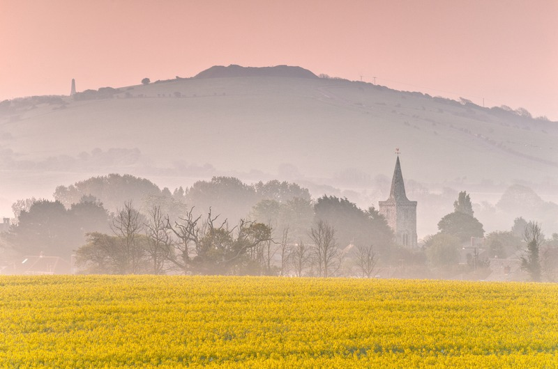 z2378 Oilseed Rape at Dawn, Brading - Seaview to Bembridge, Whitecliff Bay and Brading