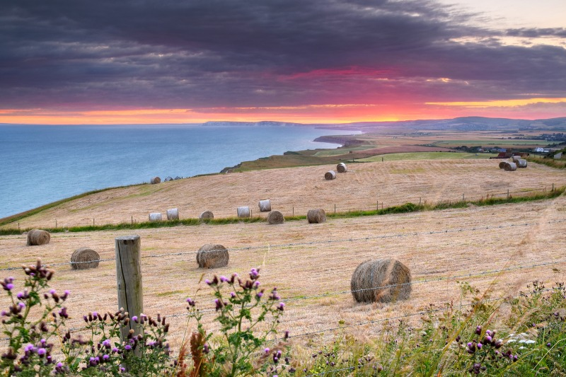 z2458 Sunset Bales overlooking Chale - Blackgang to Compton inc West Wight