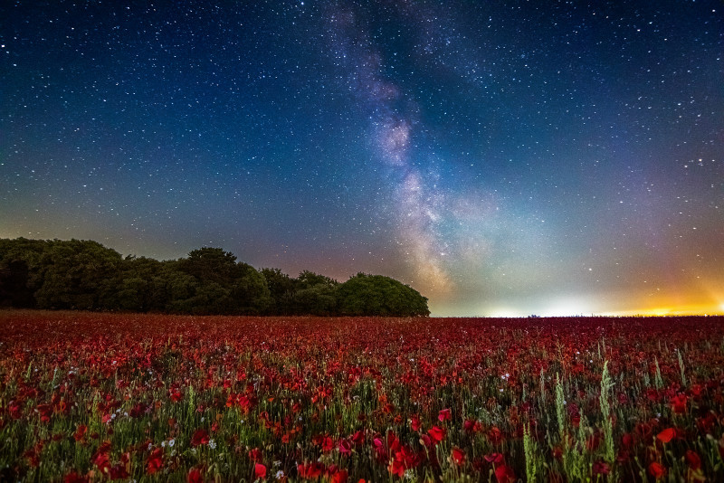 z2934 Poppies under the Milky Way, Sandown - Sandown, Shanklin, Luccombe and Wroxall