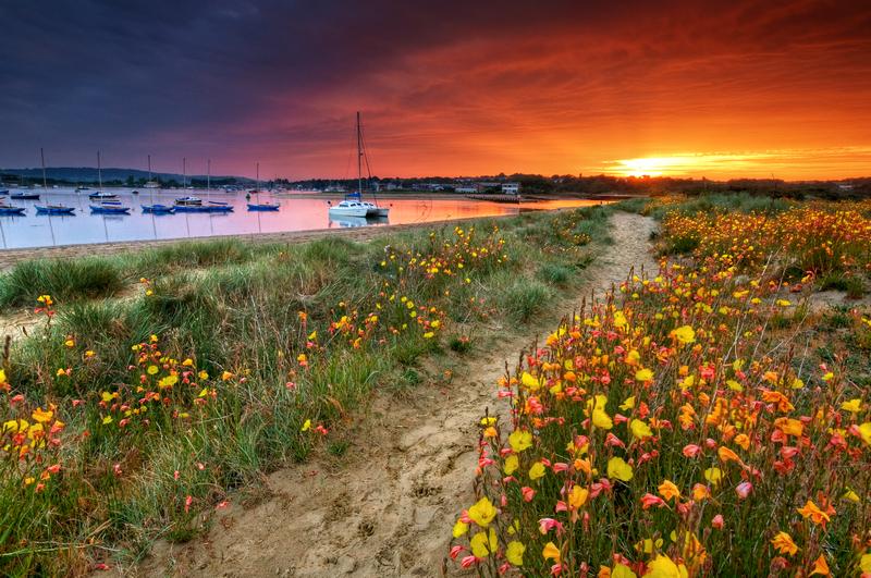 z1867 Sunset, Bembridge Dunes - Seaview to Bembridge, Whitecliff Bay and Brading