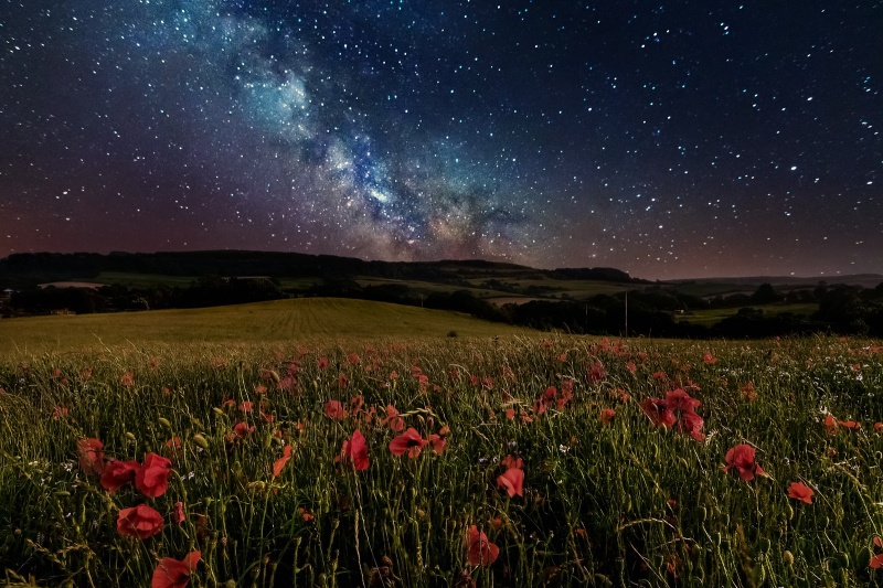 z2596 Poppies under the Milky Way, Shanklin - Sandown, Shanklin, Luccombe and Wroxall