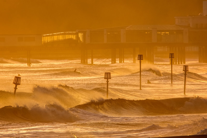 z3142 Surfers in Winter Light, Sandown Bay - Sandown, Shanklin, Luccombe and Wroxall