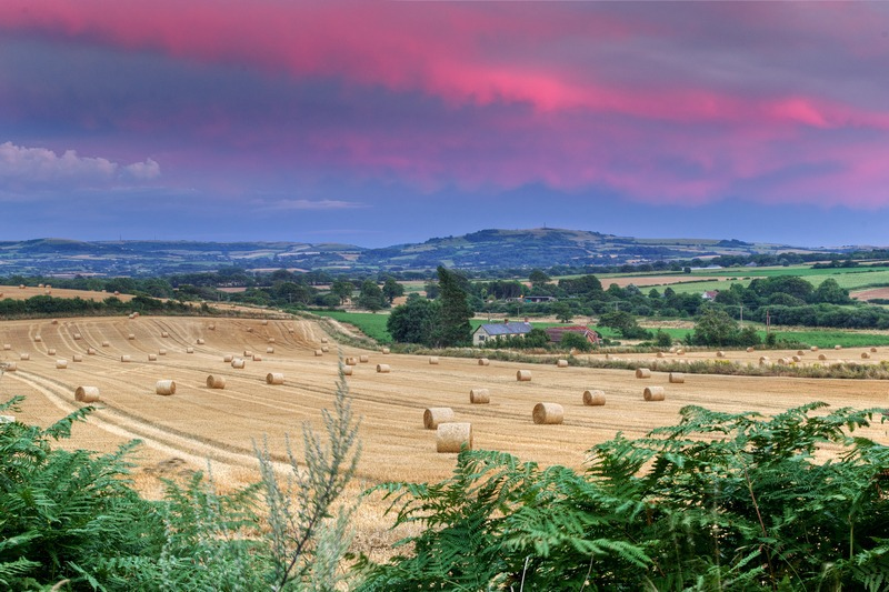 z2463 Evening Bales, Blackwater - The Inner Island inc Newport & Godshill