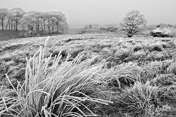 Christmas Day Morning. Haywood, Scotland - UK Scenery