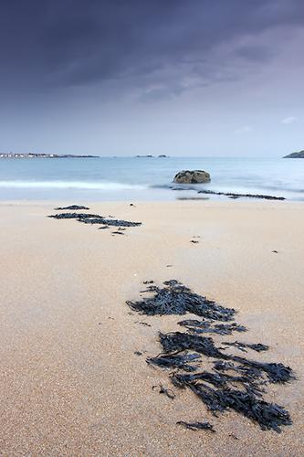 Sea of Blue - UK Scenery