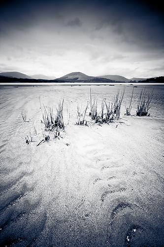 Loch Tulla Sands - Monochrome