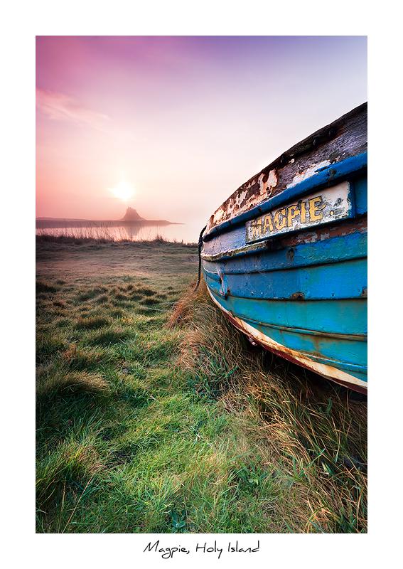 Magpie, Holy Island - Northumberland