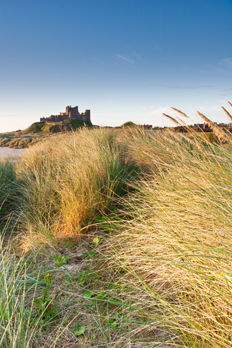 Path to...., Bamburgh Castle - Northumberland