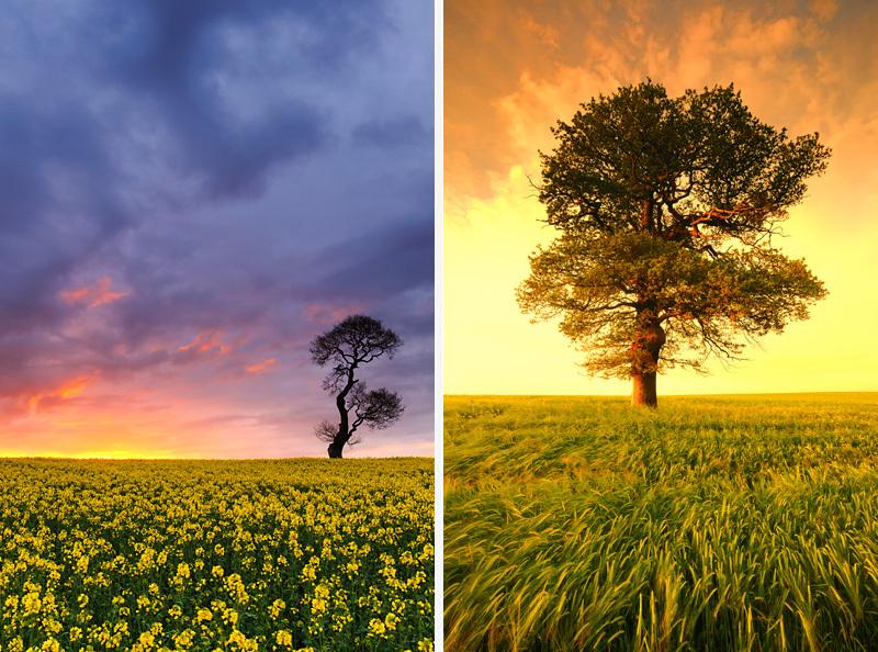 Staffordshire | Landscape Photography