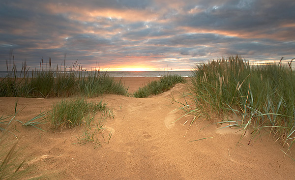 South Gare Dunes - Landscapes