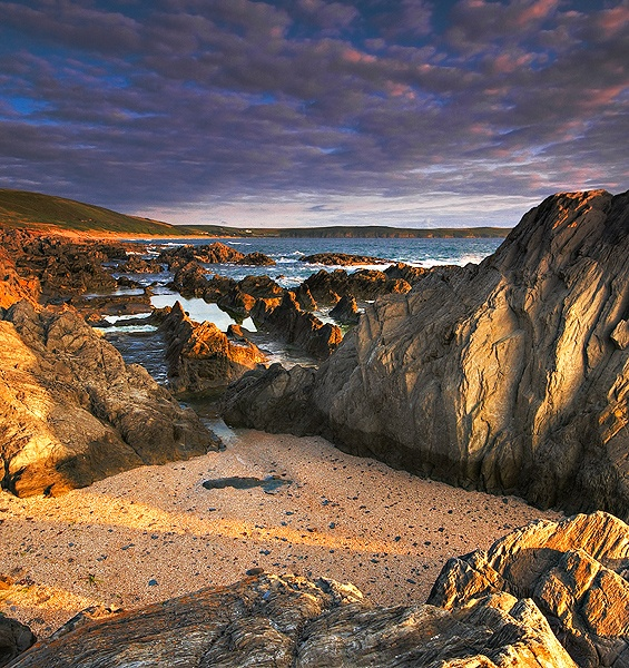 SHELL BEACH - Landscapes