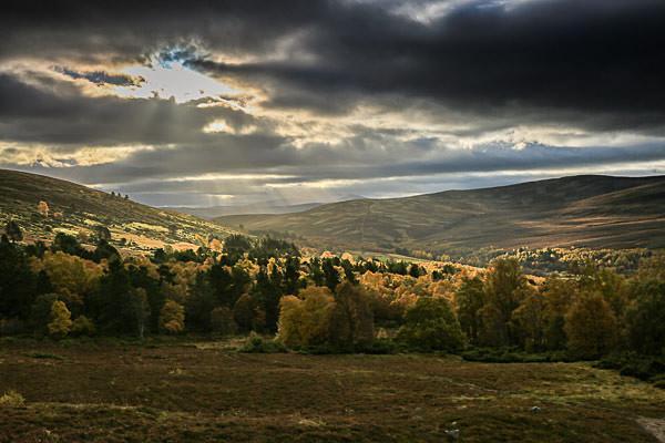 Cairngorms N P, Scotland - Landscapes