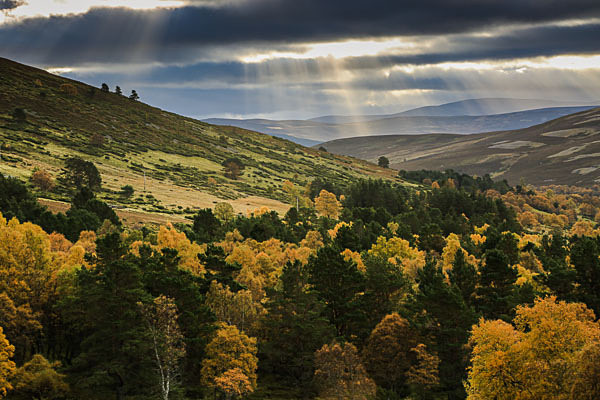 Cairngorms N P, Scotland - Landscapes