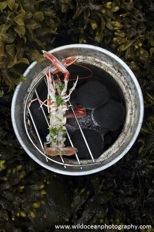GSF009 - BBQ Langoustine - 'Creel to Meal' (Glasgow Science Festival)