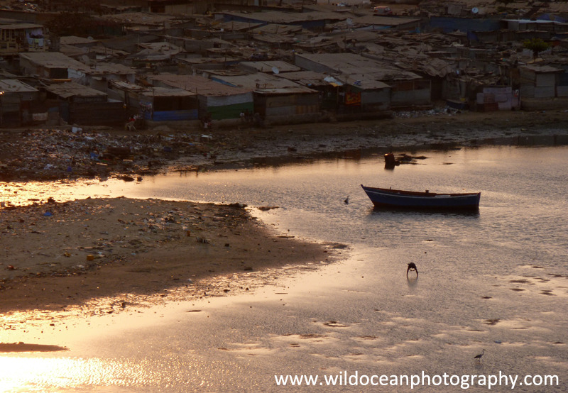 ANG016: Evening fishing - Angola (W. Africa)