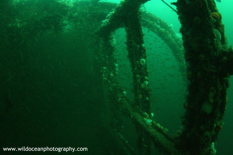 USW038: Inside the Coln - Shipwrecks and Divers