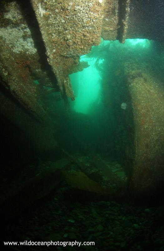 USW004: Gobernador Bories - Shipwrecks and Divers