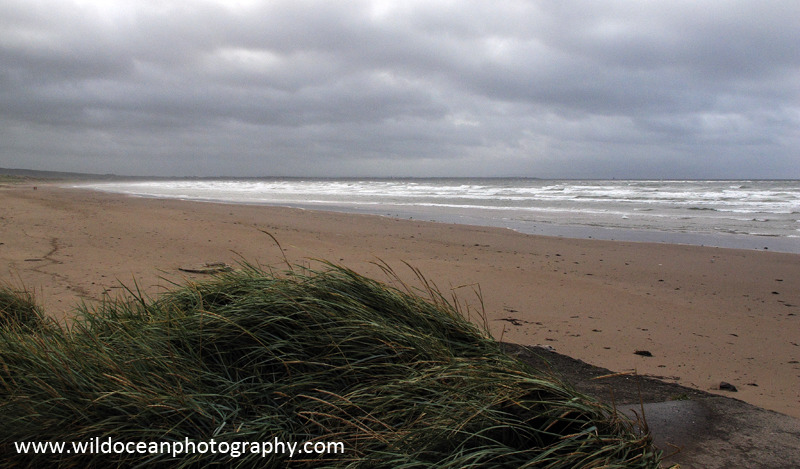 SCE013: Troon Beach - Seascapes