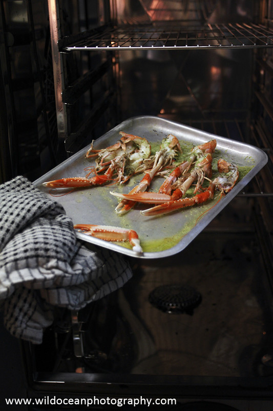 GSF011- Grilled Langoustines - 'Creel to Meal' (Glasgow Science Festival)
