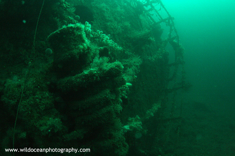 OSW036: James Barrie bows - Shipwrecks and Divers