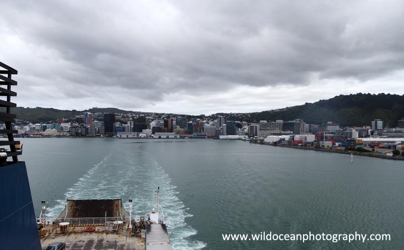 NZ022: Leaving Wellington - New Zealand (Wellington & South Island)