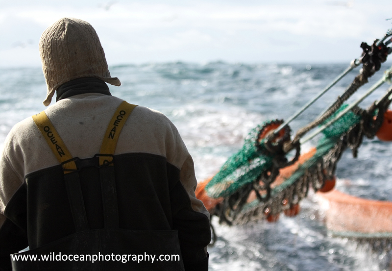 HTF013: Trawlerman - Trawl Fisheries