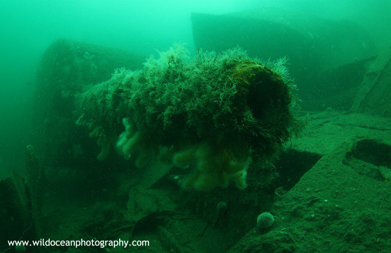 USW044: Karlsruhe Gun - Shipwrecks and Divers