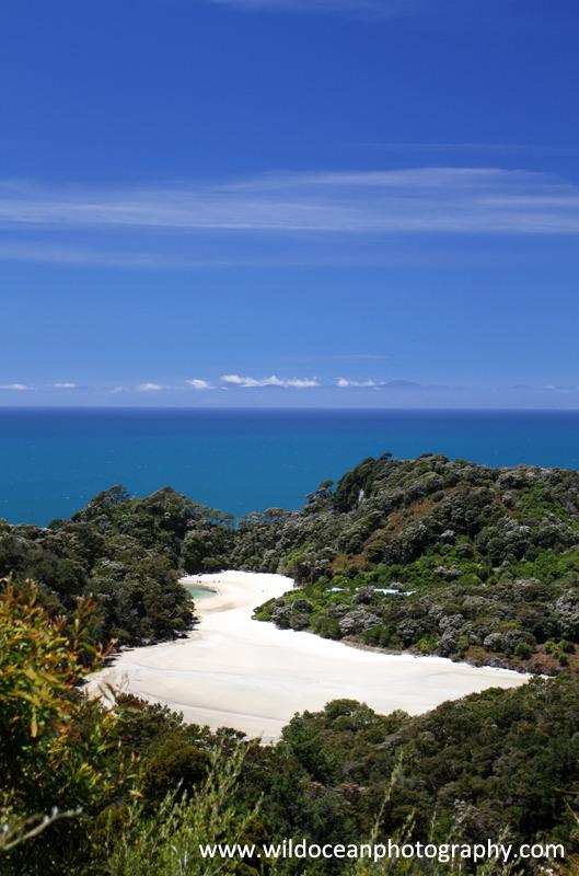 NZ001: Abel Tasman Beach - New Zealand (Wellington & South Island)