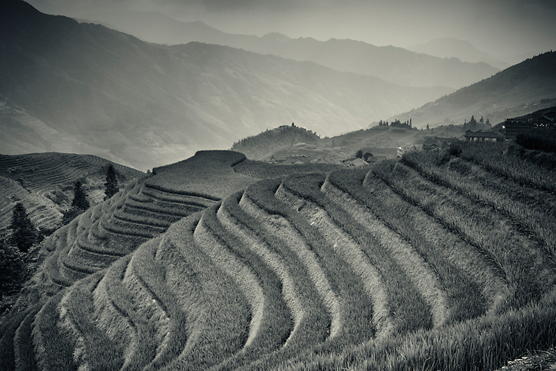 Ping An Rice Terraces, Longji, China