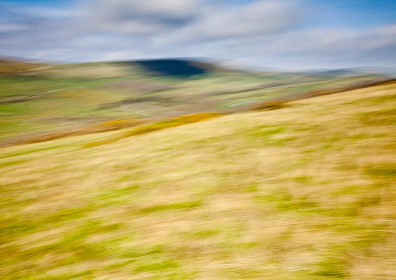 Gold Down - Landscape