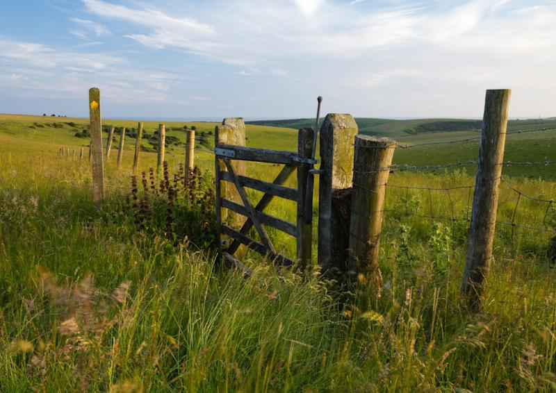 Fulking Escarpment - Landscape