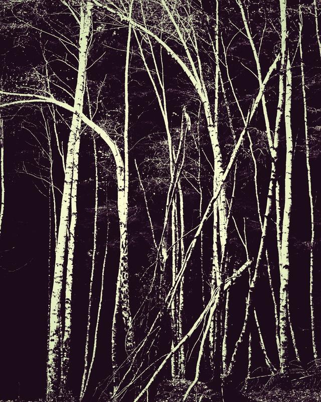 Ghost of Despair - Monochromatic