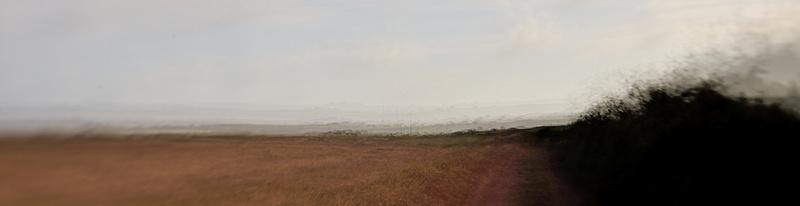 Track - Pembrokeshire