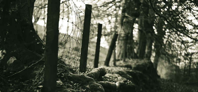 Literature of Love in Retrospect - The Boundary