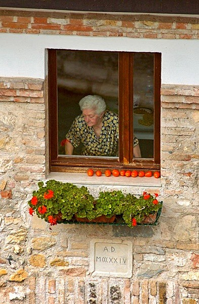 old woman  tomatoes - Travel