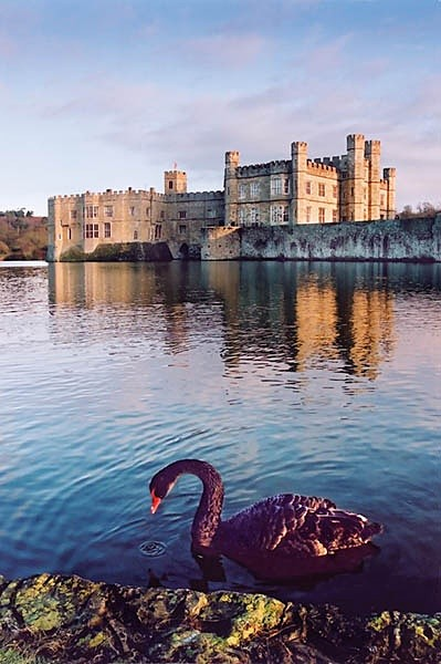 Leeds Castle - Landscapes