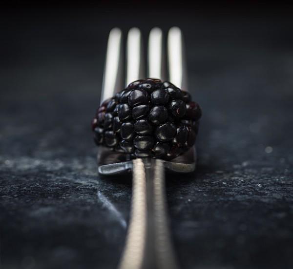 Blackberry - Still Life