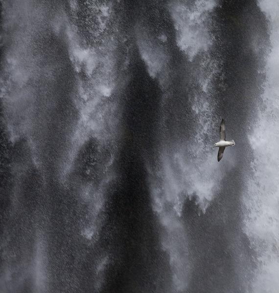 1037_sh - Water