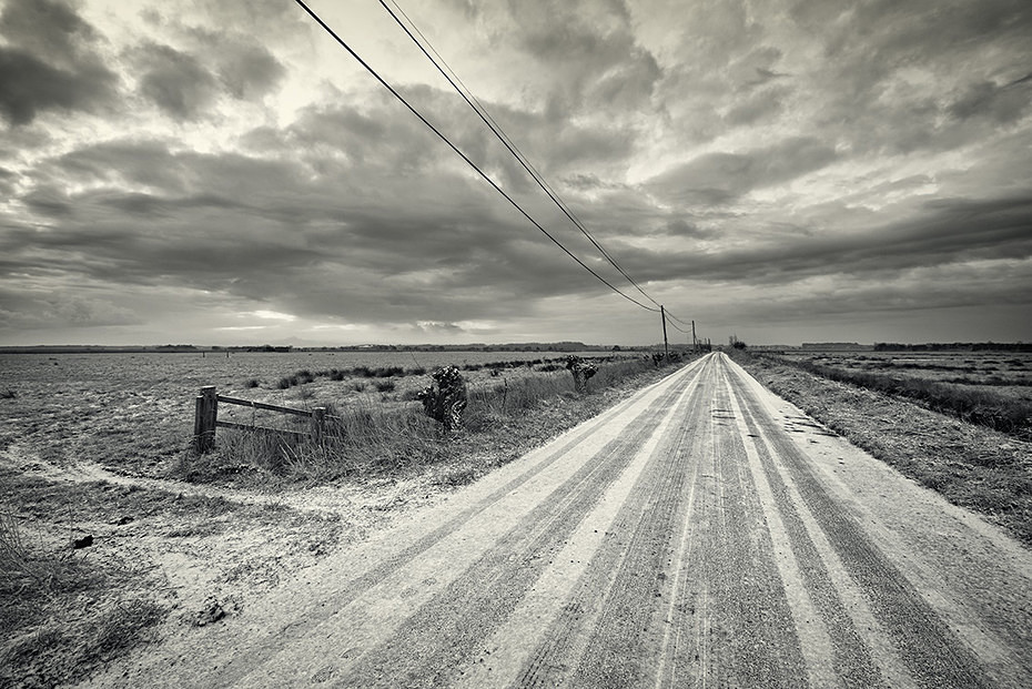 - Landscape