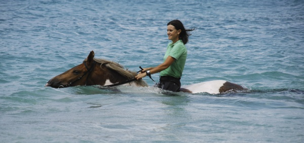- Swim on Horseback