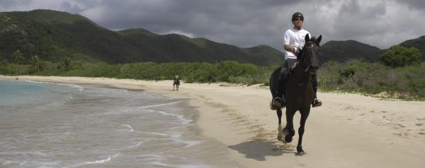 - White Sandy Beaches