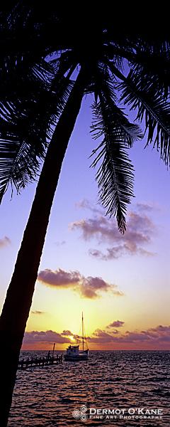 Tropical Sunrise - Panoramic Vertical Images